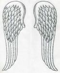 Angel Wings Drawing