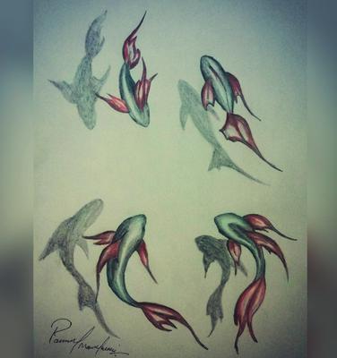 3D sketch fish