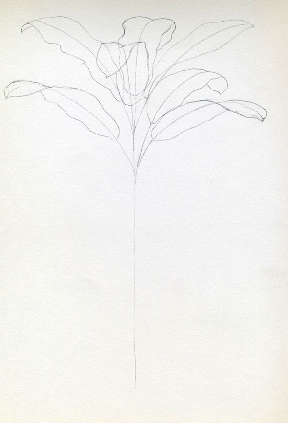 One Line Plant Drawing