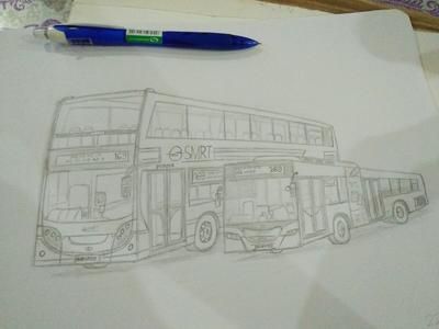 Buses Of Singapore