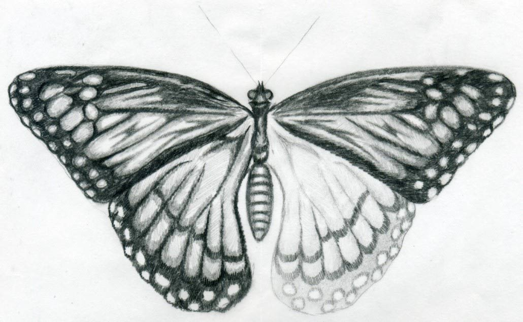 Gallery For gt Easy Black And White Drawings With Shading