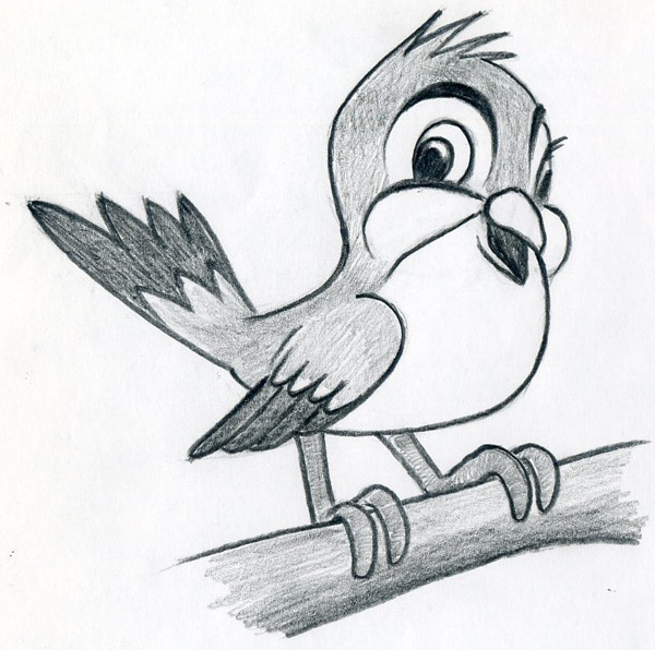 How to draw cartoon bird