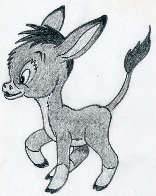 Pin baby raccoon coloring pages on pinterest - How To Draw A Cartoon Donkey Step 6 Pictures To Pin On