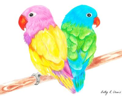 Easy Colored Pencil Drawings Of