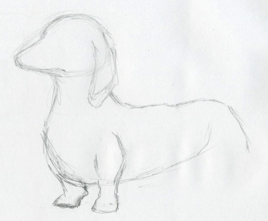 Pictures Of Dogs And Puppies To Draw