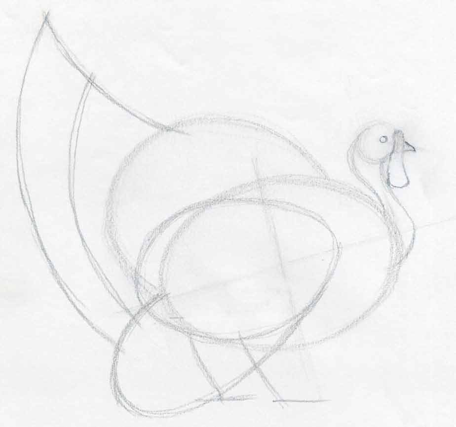 how to draw a turkey in pencil