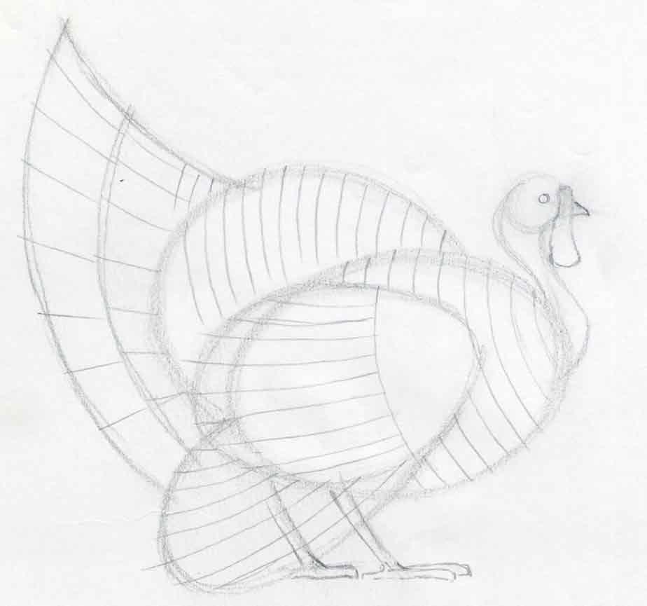 how to draw a turkey easy