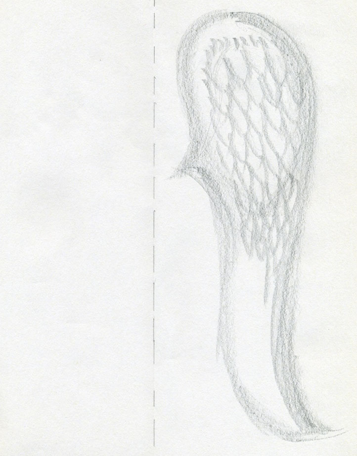 Anime Feather Drawing of The Wings And Feathers