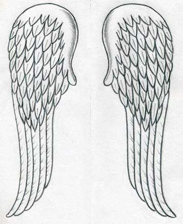 http://www.easy-drawings-and-sketches.com/images/draw-angel-wings10.jpg