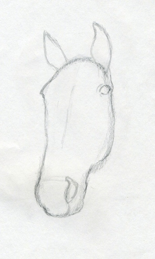 Horse head drawing for kids - photo#19