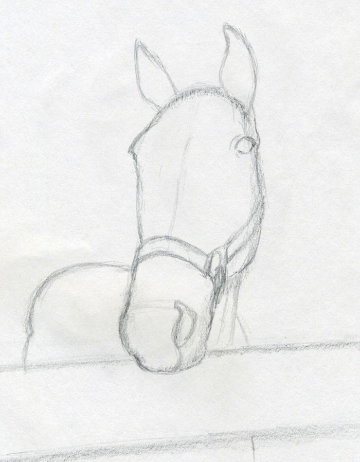 How to draw horse head draw the ears and outline the nostrils and the eyes do not hurry here rather slowly but precisely is the best way ccuart Images