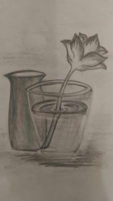 pencil drawing of flower