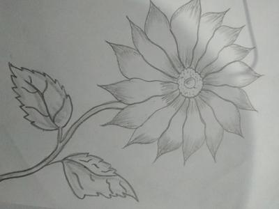 Flower with rohit art