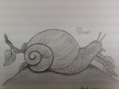 Grazing Snail