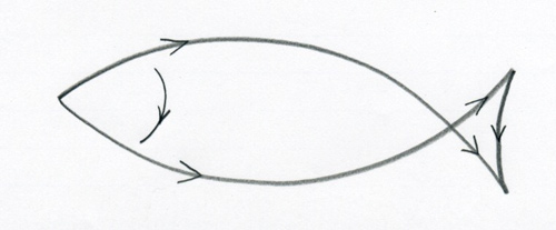 Simple Fish Line Art : How to draw a fish
