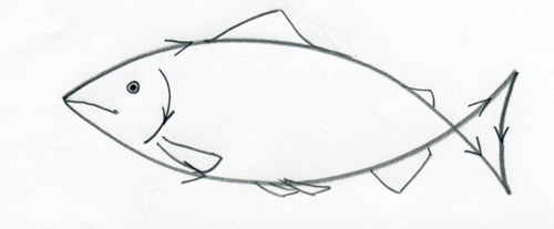 How To Draw Fish Step By Step Guide How To Draw