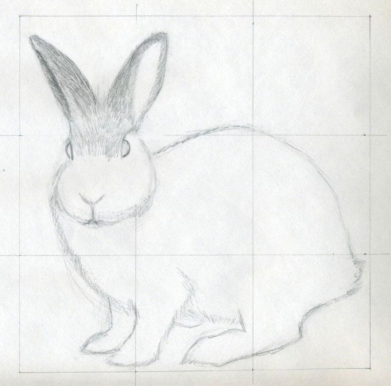 Rabbit Head Outline
