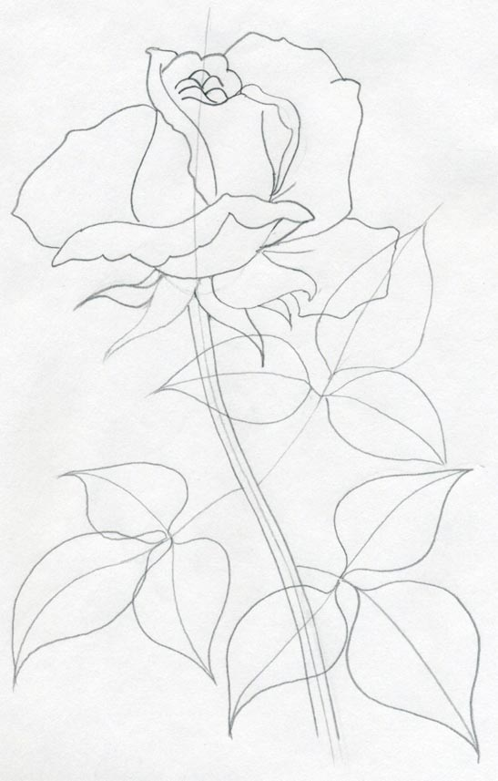 Draw a rose quickly simply and easily mightylinksfo
