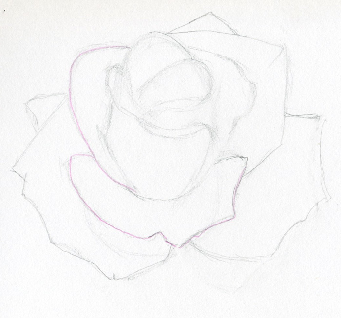 coloring pages of flowers and roses. flowers coloring pages title=