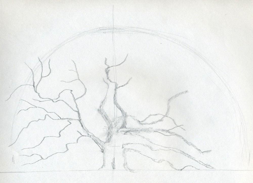 Draw an oak tree step by step