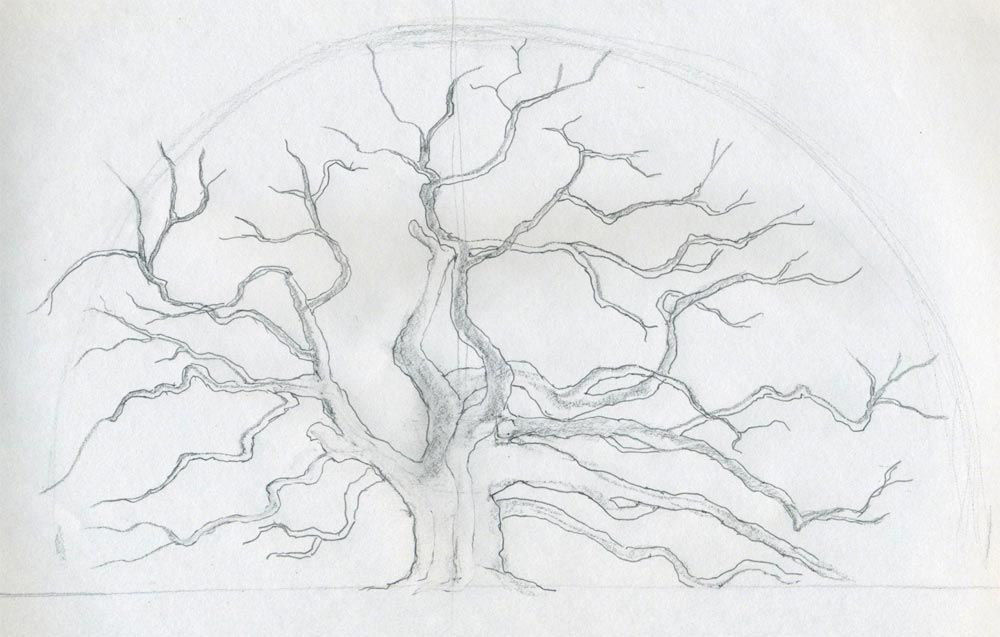 Draw an oak tree angel oak tree