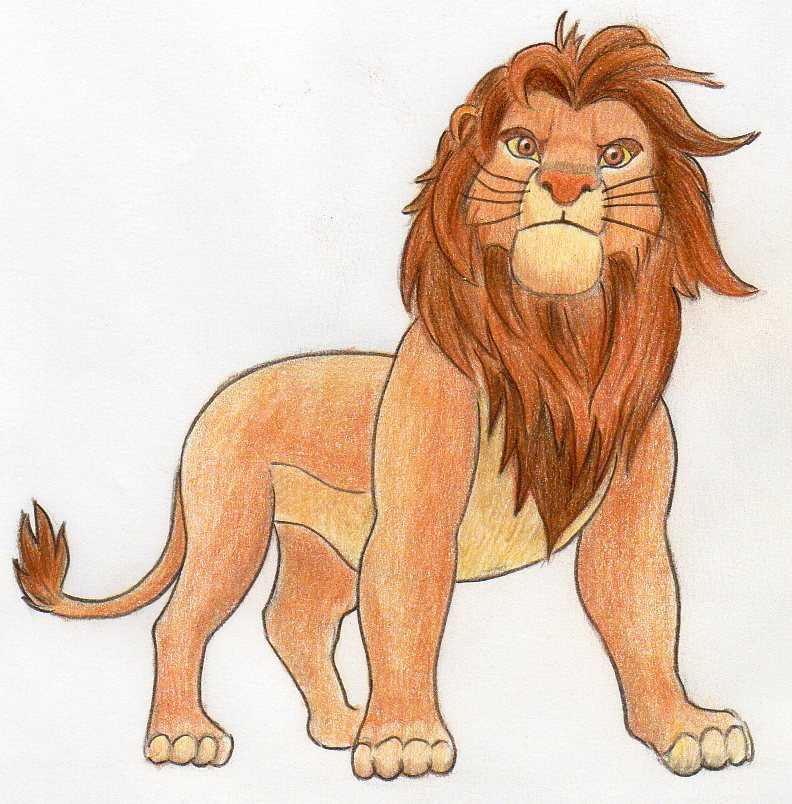 How To Draw Simba In Few Easy Steps