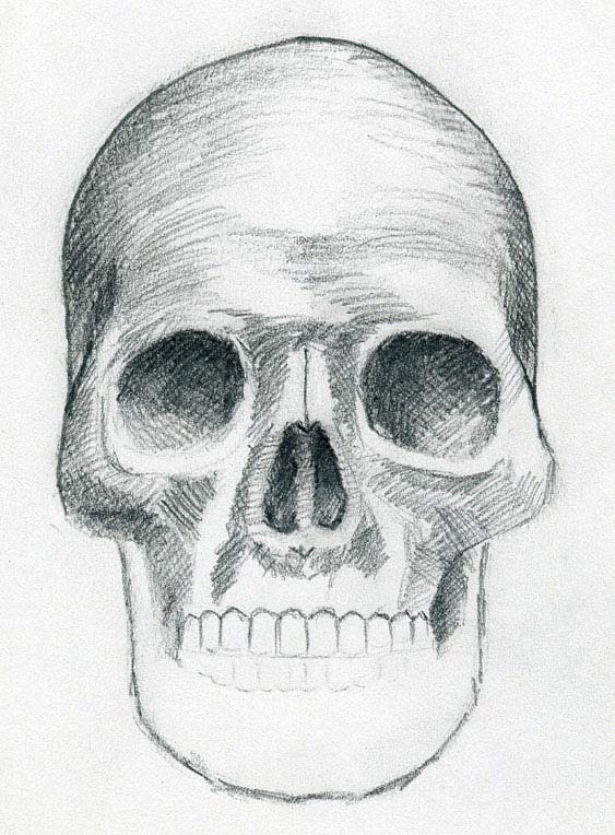 pictures of how to draw skulls