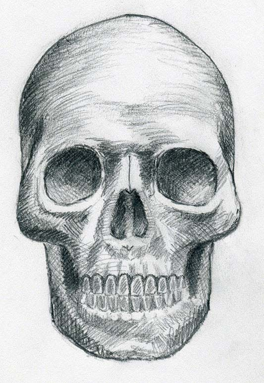 drawings of skulls