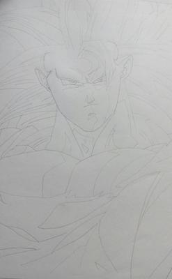Goku SS3 (i still got some skills)