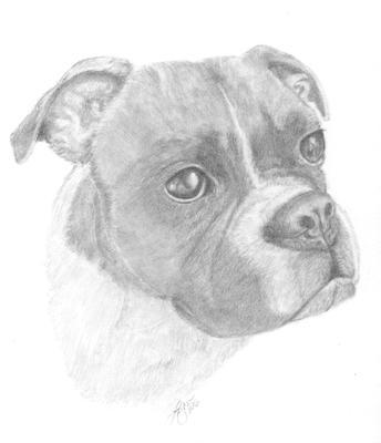 Keyla, Boxer