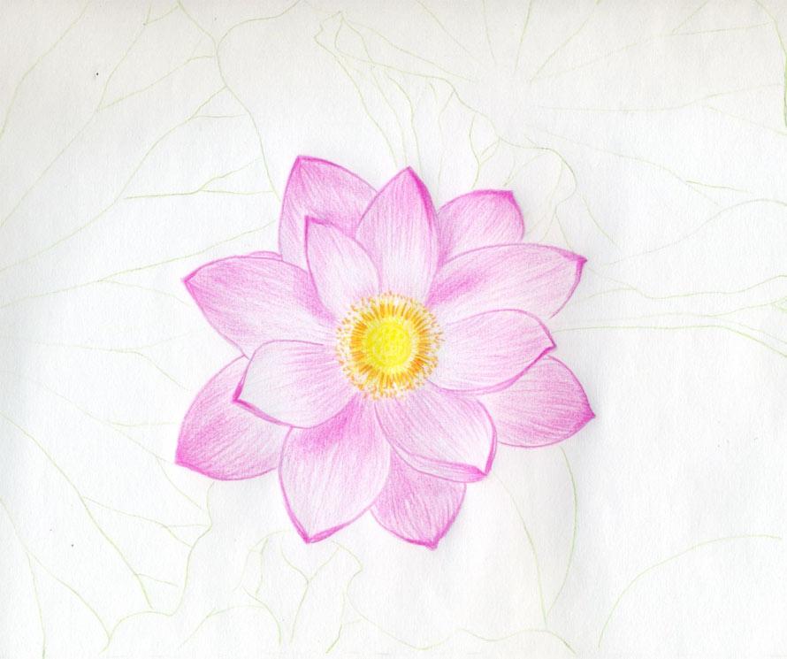 easy drawings of flowers - photo #29