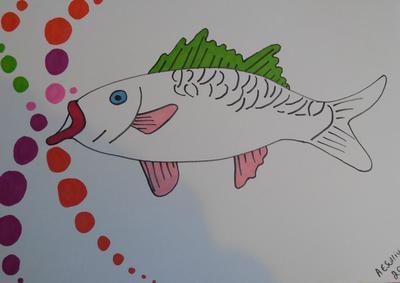 Manga fish