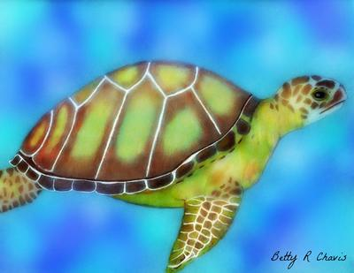 my colored pencil drawing of a sea turtle