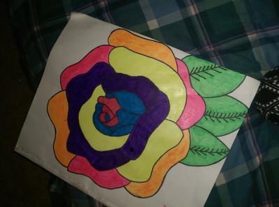 my colorfu rose