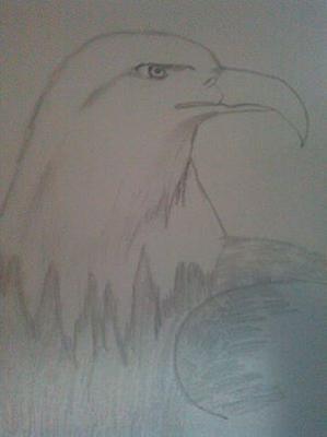 my eagle