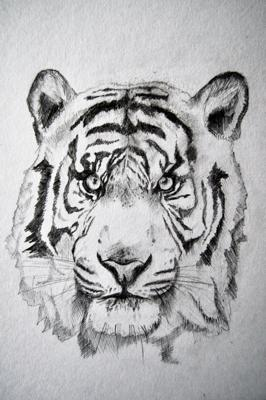 Easy tiger head drawings animalcarecollegefo easy tiger head drawings publicscrutiny Images