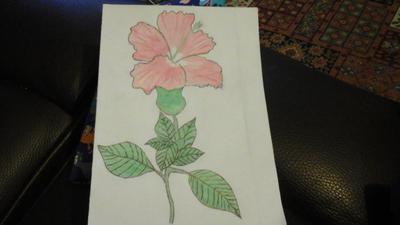 my first flower