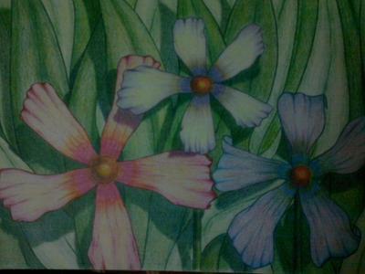 My Flowers 1
