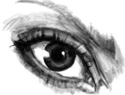 My human eye.