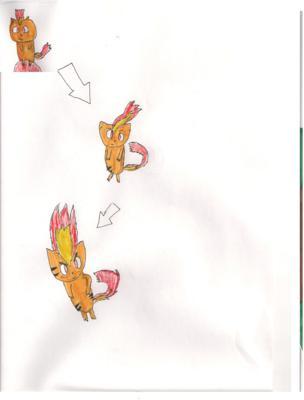 My Own Fire Starter Pokemon