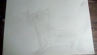 Pencil art of a cat and a butterfly