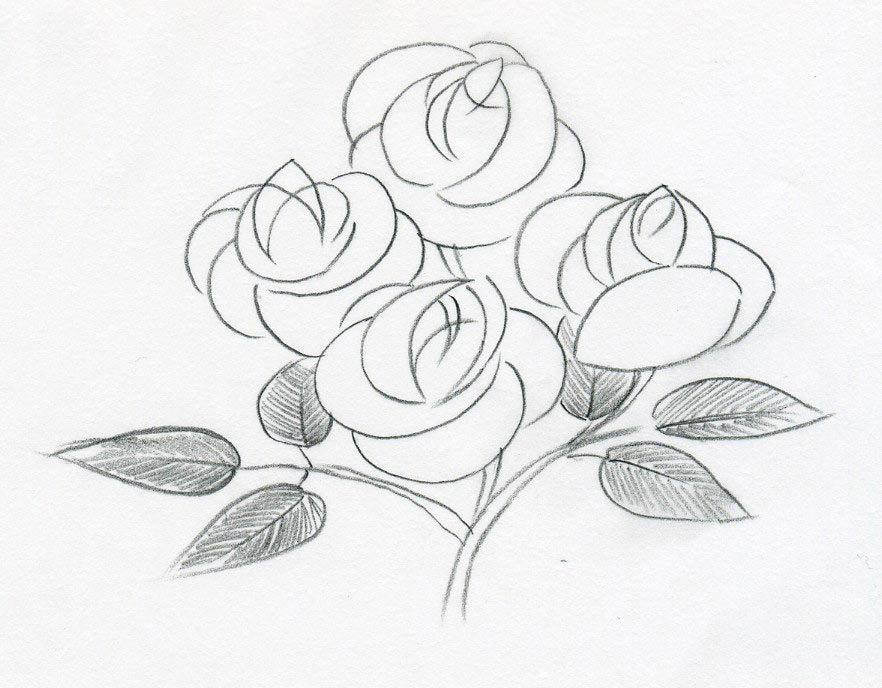 Click here to share your own flower drawings