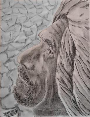 Farmer sketch