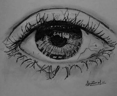 Superb Eye sketch