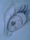 eyes detail