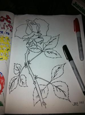 1st Rose Sketch