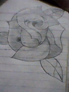my first flower sketching