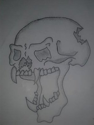My first skull drawing
