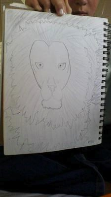 My Sketch of a Lion