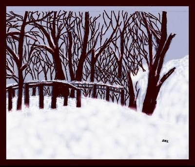 Path in the snow.